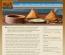 Roti Indian Bistro
